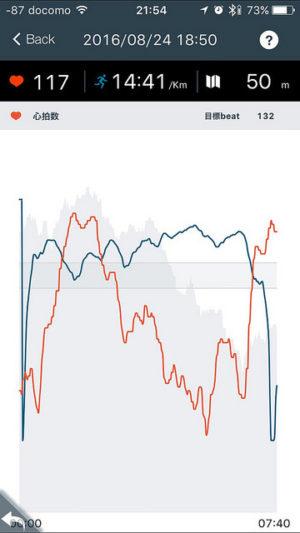 グラフに目盛りがない。運動の選択肢に自転車がないのでものすごい高速で走った人みたいになっているが、実際には下り基調をMTBで降りただけ・・・