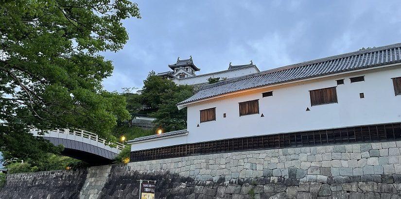 668_2021/06/17 土師川堤防・音無瀬橋 12.6km